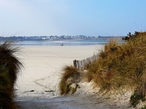 horses-on-sweeping-white-sands-at-dossen-beach-near-roscoff